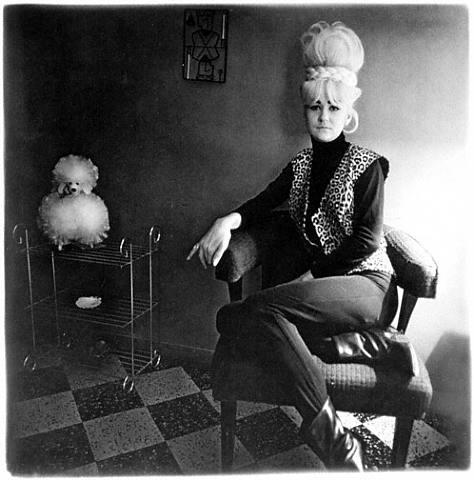 La vie de Diane Nemerov a toujours plus ou moins baigné dans la photographie, même si elle ne la côtoyait, au début, qu'en tant qu'observatrice. Diane, fille d'un couple nanti de New York City, rencontre celui qui allait devenir son mari, Allan Arbus, à l'âge de 14 ans.